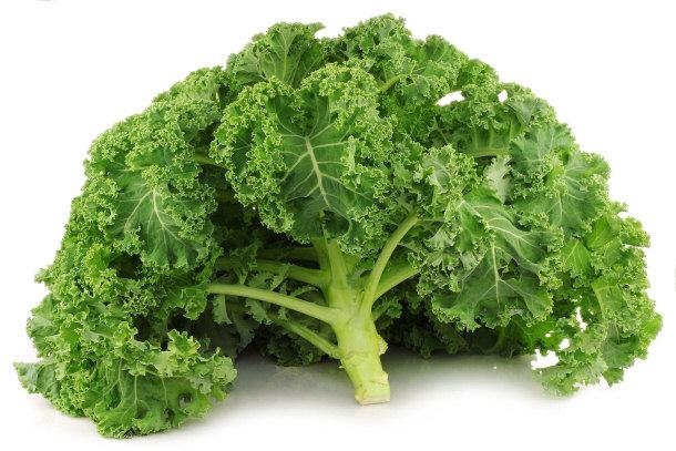Kale, variété de chou frisé