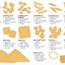 Infographie sur toutes les sortes de pâtes