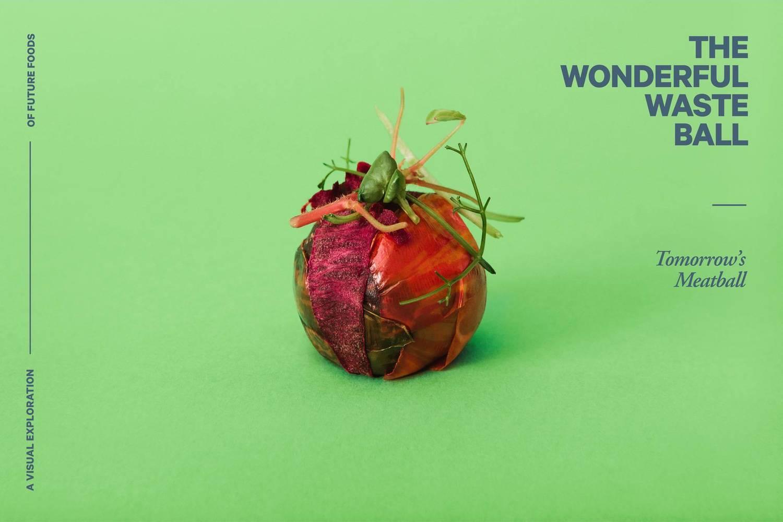 The Wonderful Waste Ball