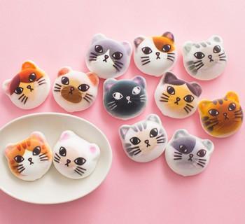 Les chat-mallows