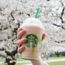 Starbucks-CherryBlossomFrappuccino