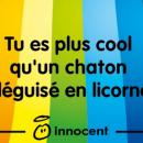 chaton-licorne