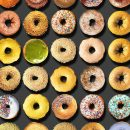 donuts-portraits-food